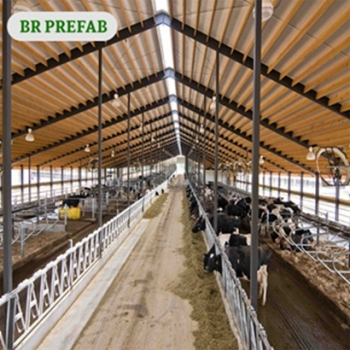China Supplied Light Steel Frame For Cow Shed